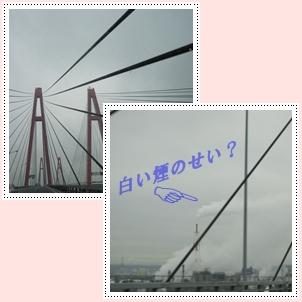 b0167519_14191596.jpg