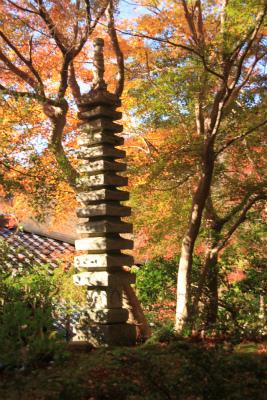 瑠璃光院の秋の特別公開 京都大原八瀬_d0055236_21334914.jpg