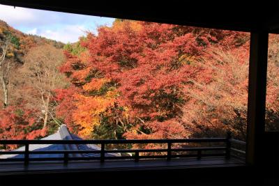 瑠璃光院の秋の特別公開 京都大原八瀬_d0055236_21341768.jpg