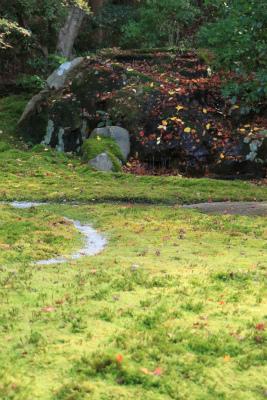 瑠璃光院の秋の特別公開 京都大原八瀬_d0055236_2148877.jpg