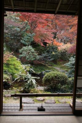 瑠璃光院の秋の特別公開 京都大原八瀬_d0055236_21532865.jpg