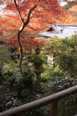瑠璃光院の秋の特別公開 京都大原八瀬_d0055236_21535065.jpg