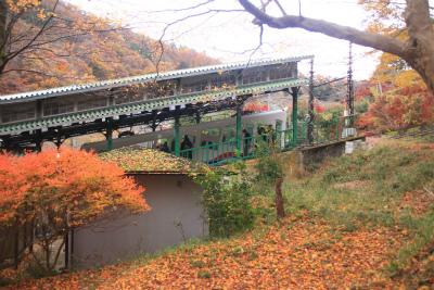 瑠璃光院の秋の特別公開 京都大原八瀬_d0055236_21544841.jpg