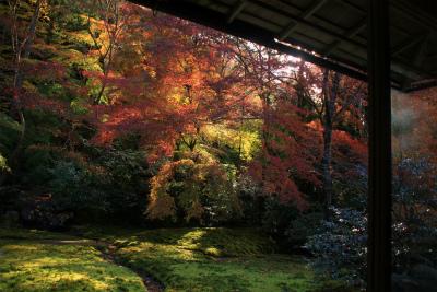 瑠璃光院の秋の特別公開 京都大原八瀬_d0055236_22163350.jpg