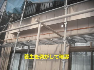 7日目の作業_f0031037_20433912.jpg