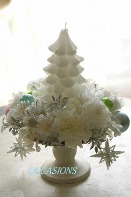 Christmas flower lesson_e0158355_14475872.jpg