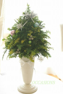 Christmas flower lesson_e0158355_14482351.jpg