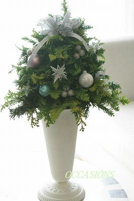 Christmas flower lesson_e0158355_14483338.jpg
