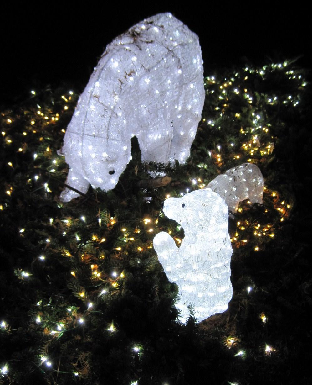 軽井沢・冬ものがたり 2012~White Christmas in 軽井沢 ①_f0236260_214183.jpg