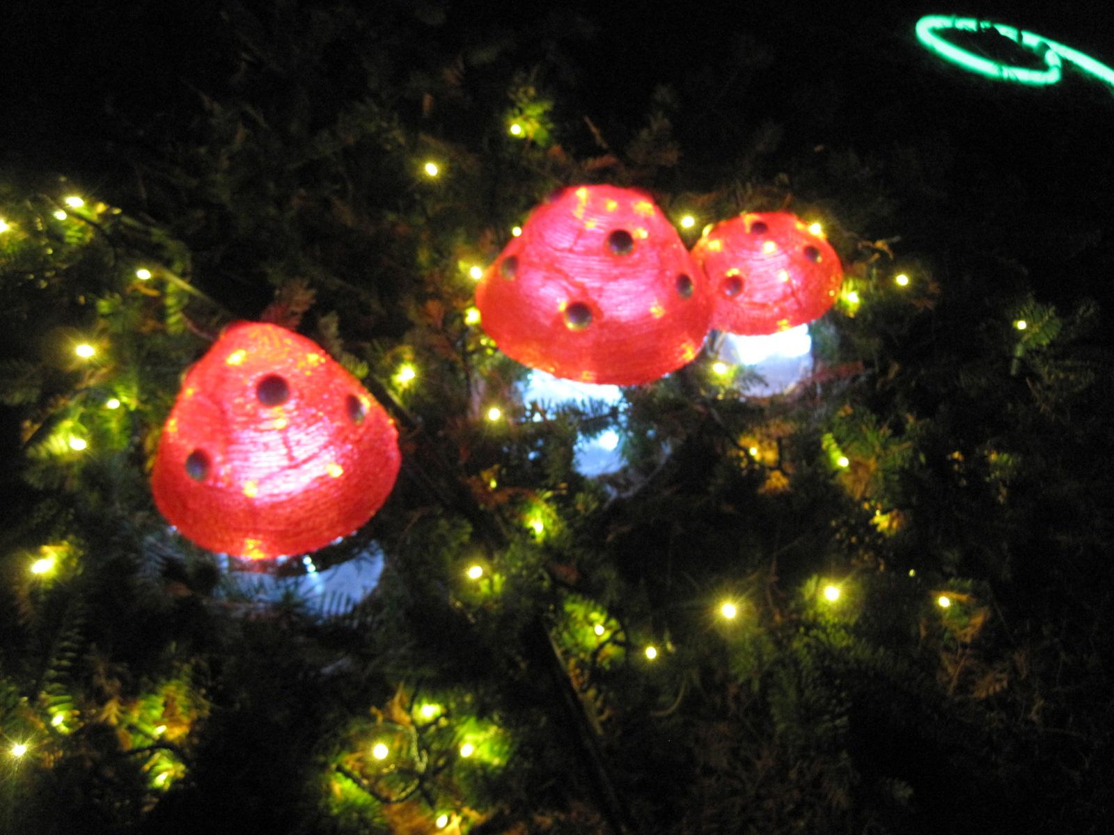 軽井沢・冬ものがたり 2012~White Christmas in 軽井沢 ①_f0236260_215360.jpg