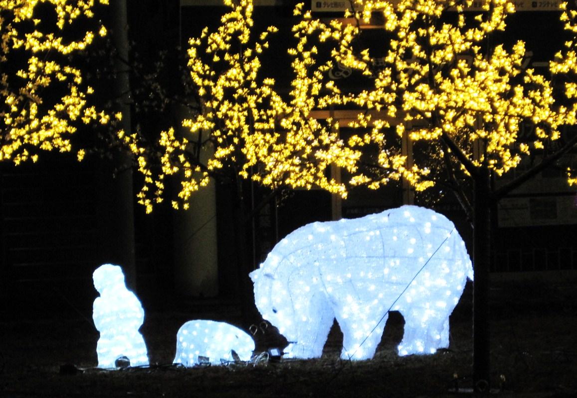 軽井沢・冬ものがたり 2012~White Christmas in 軽井沢 ①_f0236260_2515984.jpg