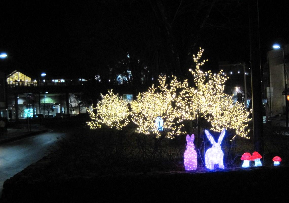 軽井沢・冬ものがたり 2012~White Christmas in 軽井沢 ①_f0236260_254141.jpg