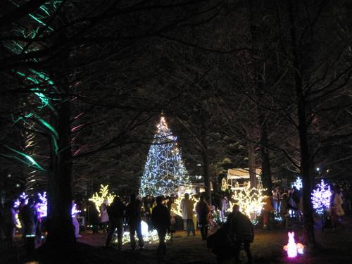 軽井沢・冬ものがたり 2012~White Christmas in 軽井沢 ①_f0236260_3361910.jpg