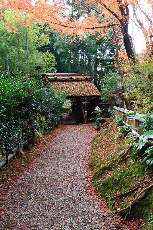 直指庵 - 京都の紅葉2011_e0214961_20191727.jpg