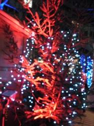 近所のクリスマスマーケット_e0195766_19173459.jpg