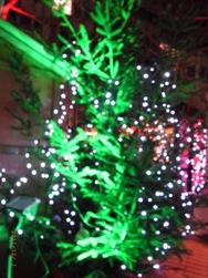 近所のクリスマスマーケット_e0195766_19175325.jpg