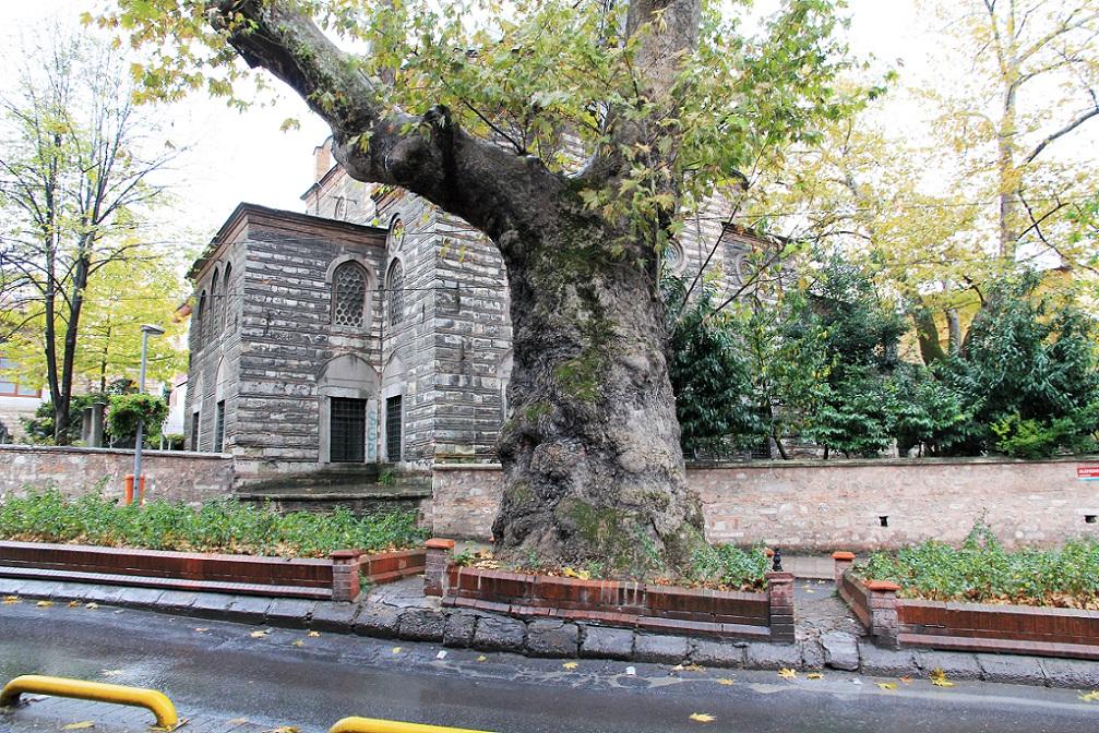 地下宮殿出口~ギュルハネ公園   イスタンブール その12_a0107574_18403336.jpg