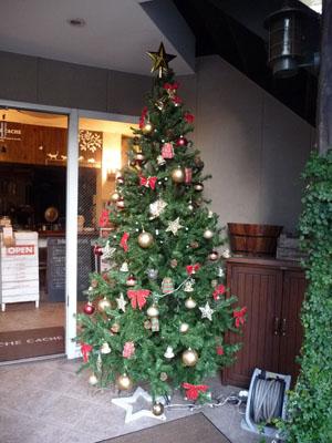 クリスマスツリーを出しました!_e0173183_10202410.jpg