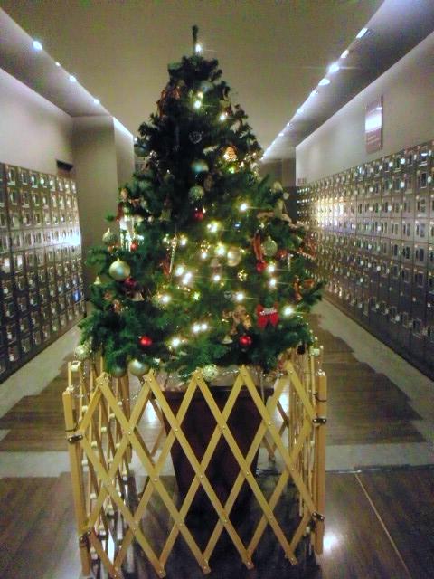 もうすぐクリスマス‼_e0187507_2335569.jpg