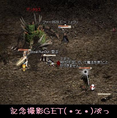 11月17日!竜に初挑戦 (ノ,,・ω)ノおぉぉぉ~_f0072010_2118257.jpg