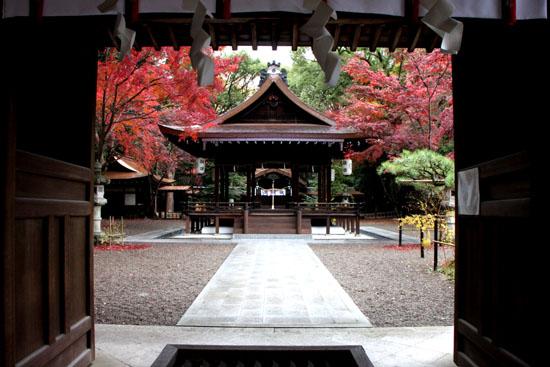 梨の木神社 紅葉後半の輝き_e0048413_19321348.jpg