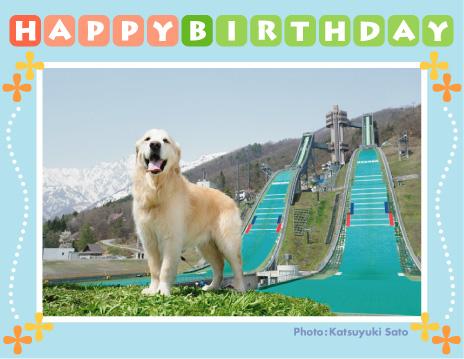 ロッキーくん、お誕生日おめでとう♪_d0102523_8145875.jpg