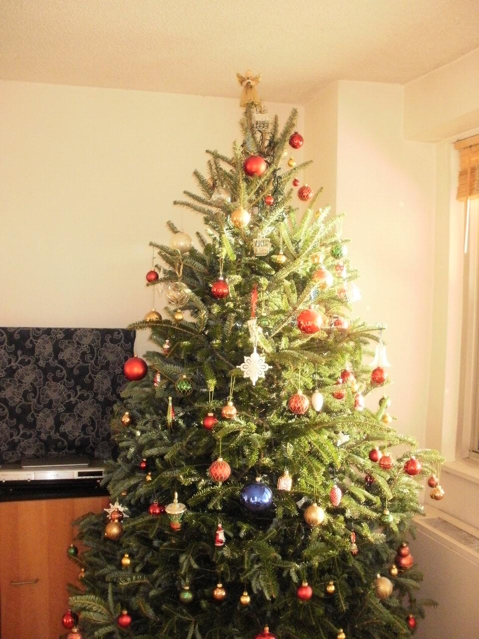 クリスマスツリー2011_f0095325_4471457.jpg