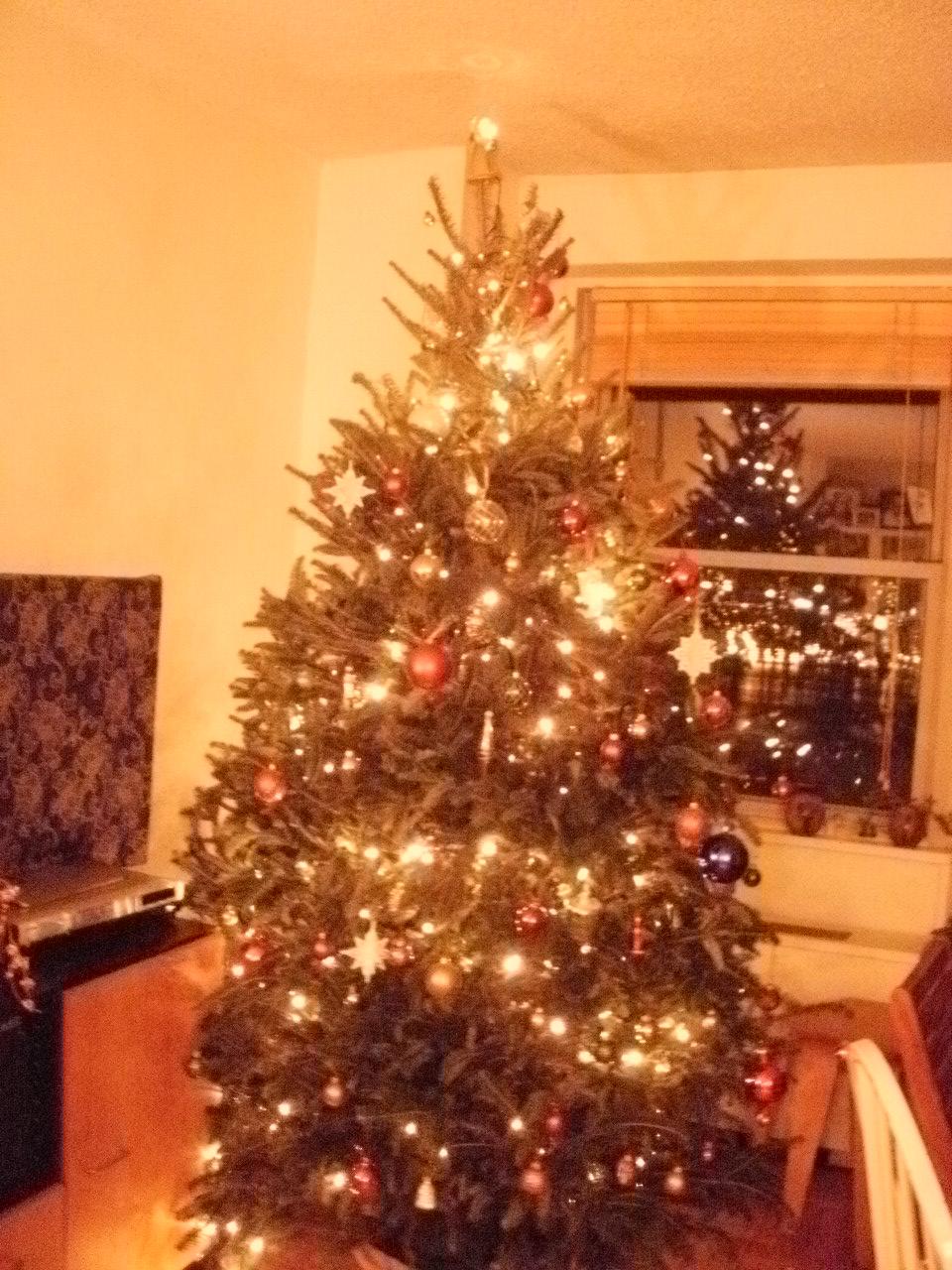 クリスマスツリー2011_f0095325_4473021.jpg