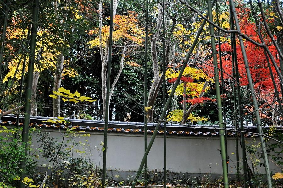 慈眼寺(兵庫県三木市)_d0148541_20393957.jpg