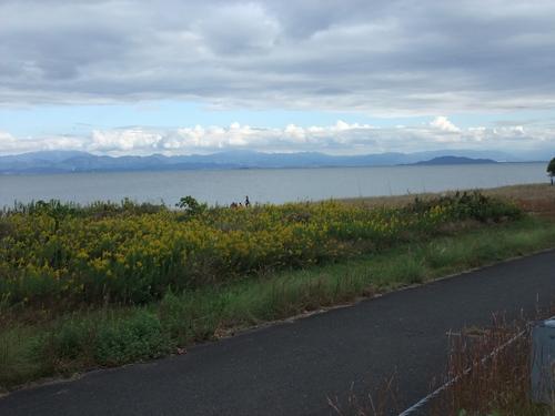 琵琶湖一周サイクリング180km ~湖西編~_d0174462_2591966.jpg