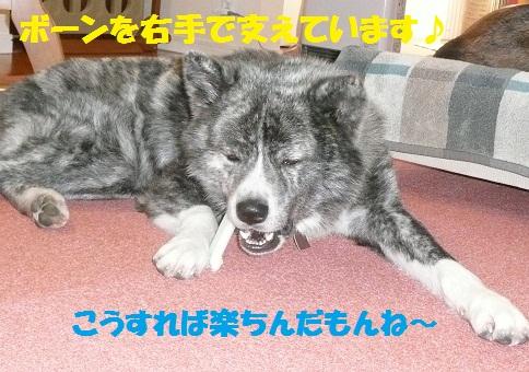 f0121712_15381214.jpg