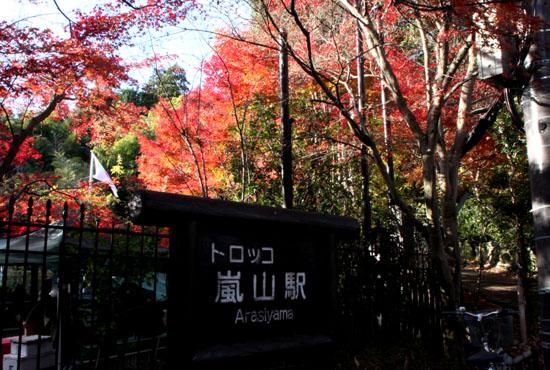 嵯峨野を歩く 紅葉後半_e0048413_15395545.jpg