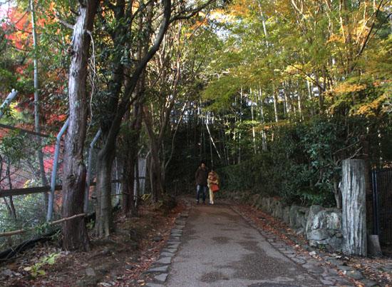 嵯峨野を歩く 紅葉後半_e0048413_1540462.jpg