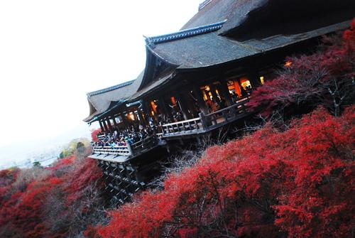 京便り_c0116714_17132876.jpg