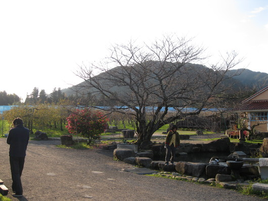 りんご☆天国へ~~♪_a0125419_9502011.jpg
