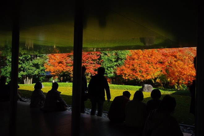 再び京都へ 宇治 平等院_e0171336_1301181.jpg