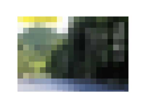 d0119443_155273.jpg