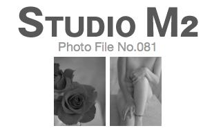 STUDIO M2 Photo File No.081「薔薇とヌード」_a0002672_9441985.jpg