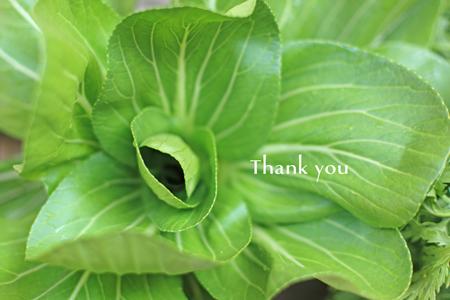 Thankyou!_c0137872_1372635.jpg
