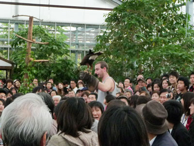 神戸花鳥園_e0173183_2359382.jpg