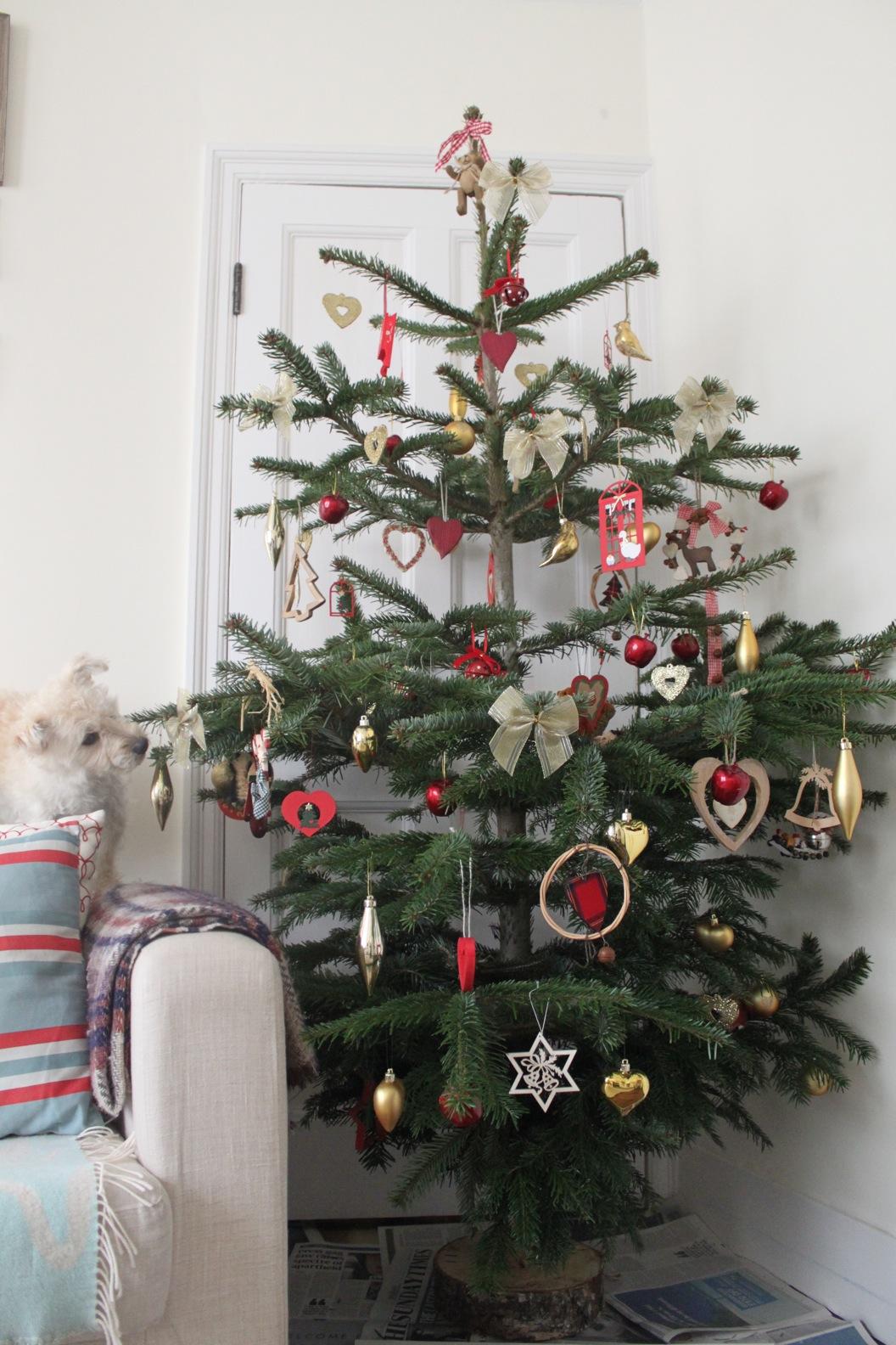 クリスマスツリー 2011_a0137487_0285467.jpg