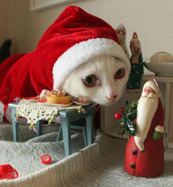 サンタさんがやって来た♪_d0071596_19142245.jpg
