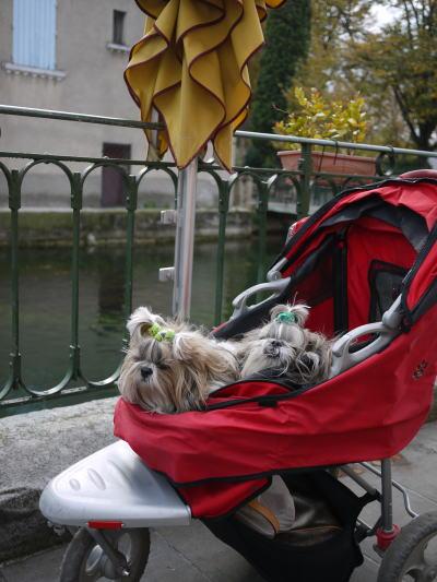 シャンブランと行く南仏旅行・その13「リル・シュル・ラ・ソルグ」_c0090198_3464287.jpg