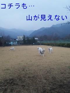 寒いはずですね〜_d0148408_19495018.jpg