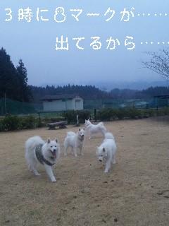 寒いはずですね〜_d0148408_1949506.jpg