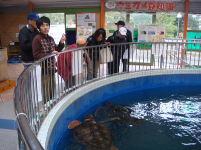 12/7紀宝町のウミガメ公園へ行きました!_a0154110_9493257.jpg