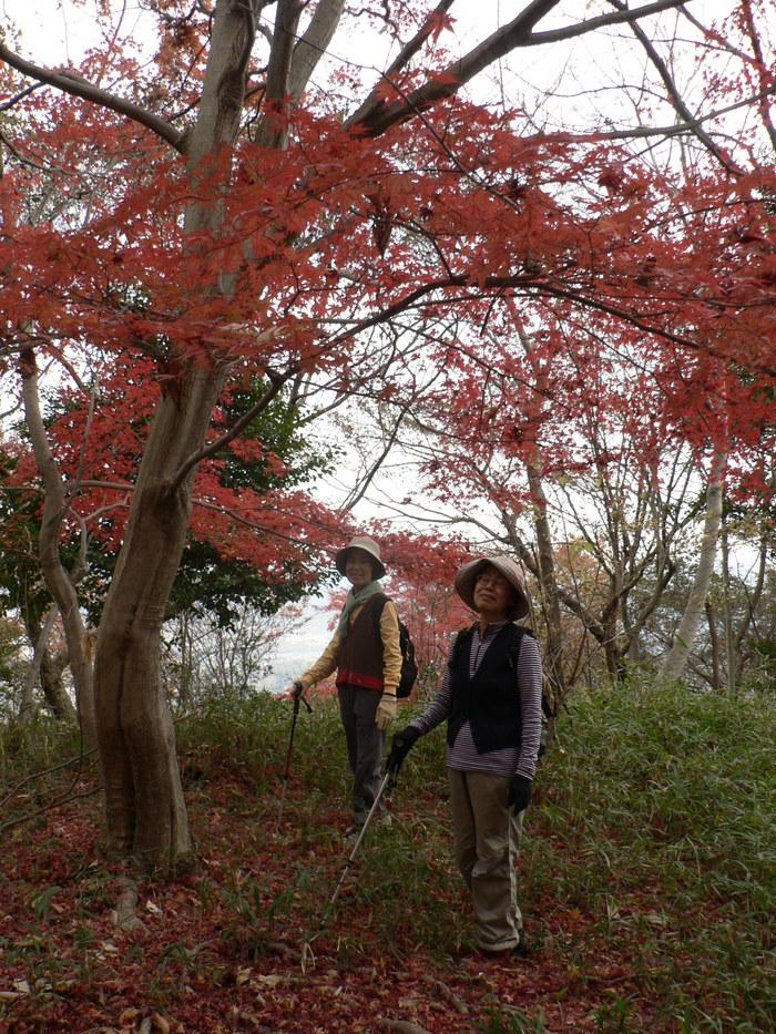 阿武山(586m)_f0219710_1047548.jpg