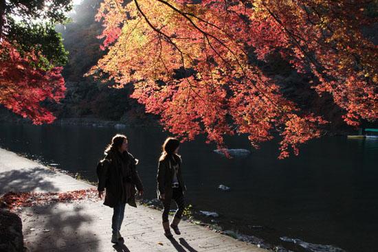 嵐山亀山公園 紅葉終盤_e0048413_19513938.jpg