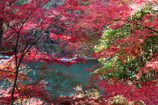 嵐山亀山公園 紅葉終盤_e0048413_1951564.jpg