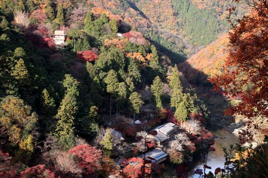 嵐山亀山公園 紅葉終盤_e0048413_19525049.jpg